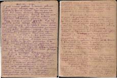Страницы из дневника Лиды Андросовой